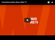 Videolink WAOO Web TV